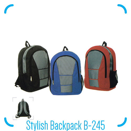 Stylish Backpack B-245