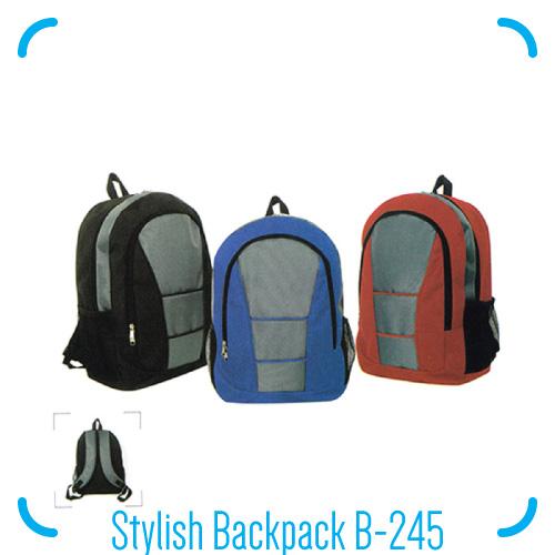 Stylish Backpack B-245