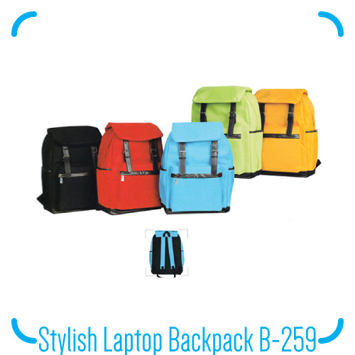 Stylish Laptop Backpack B-259