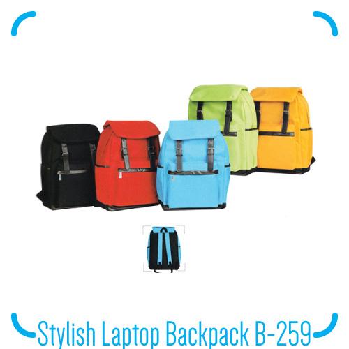 Stylish Laptop Backpack B-259