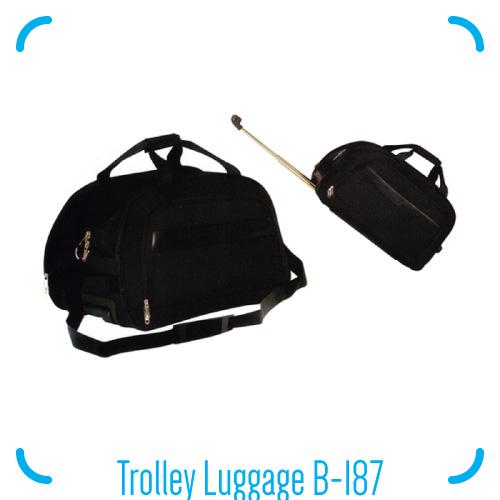 Trolley Luggage B-187