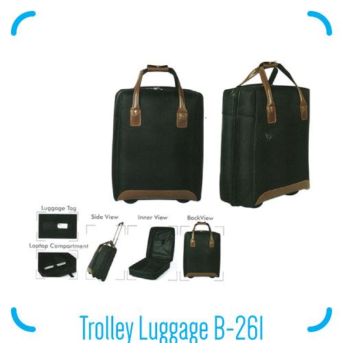 Trolley Luggage B-261